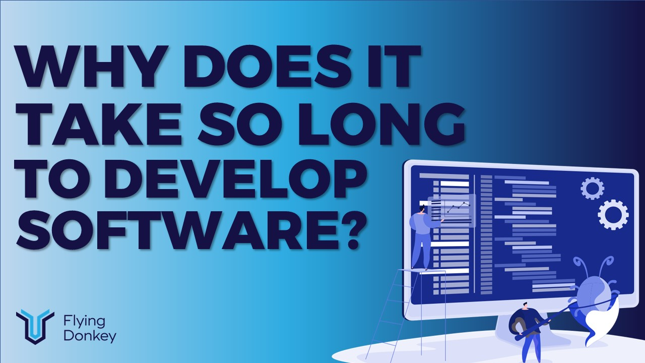 Why does it take so long to develop software?